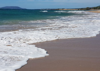 strand-golden-beach-pylos-header